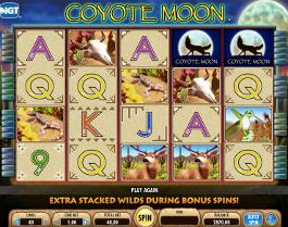 caça niquel coyote moon